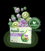 Phytoxil Transit Comprimés B/20 à Le Mans
