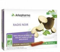 Arkofluide Bio Ultraextract Radis Noir Solution Buvable 20 Ampoules/10ml à Le Mans