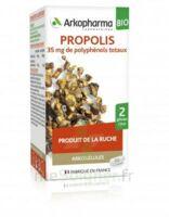 Arkogélules Propolis Bio Gélules Fl/45 à Le Mans