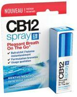 Cb 12 Spray Haleine Fraîche 15ml à Le Mans