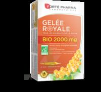 Forte Pharma Gelée Royale Bio 2000 Mg Solution Buvable 20 Ampoules/15ml à Le Mans