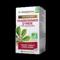 Arkogélules Marronnier D'inde Bio Gélules Fl/45 à Le Mans
