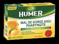 Humer Pharyngite Past Mal De Gorge Baies Sauvages à Le Mans